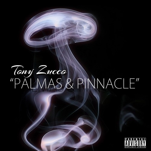Tony Zucco – Palmas & Pinnacle
