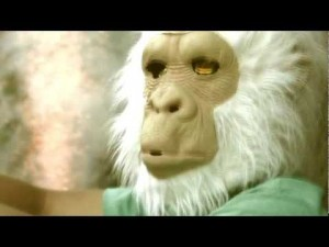 Travis The Chimp &#8211; The Fourth