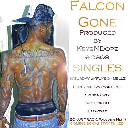 Falcon Gone flick