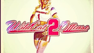 Wildcat20Cover