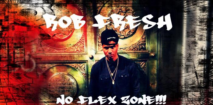 Rob Fresh – No Flex Zone (RmX)