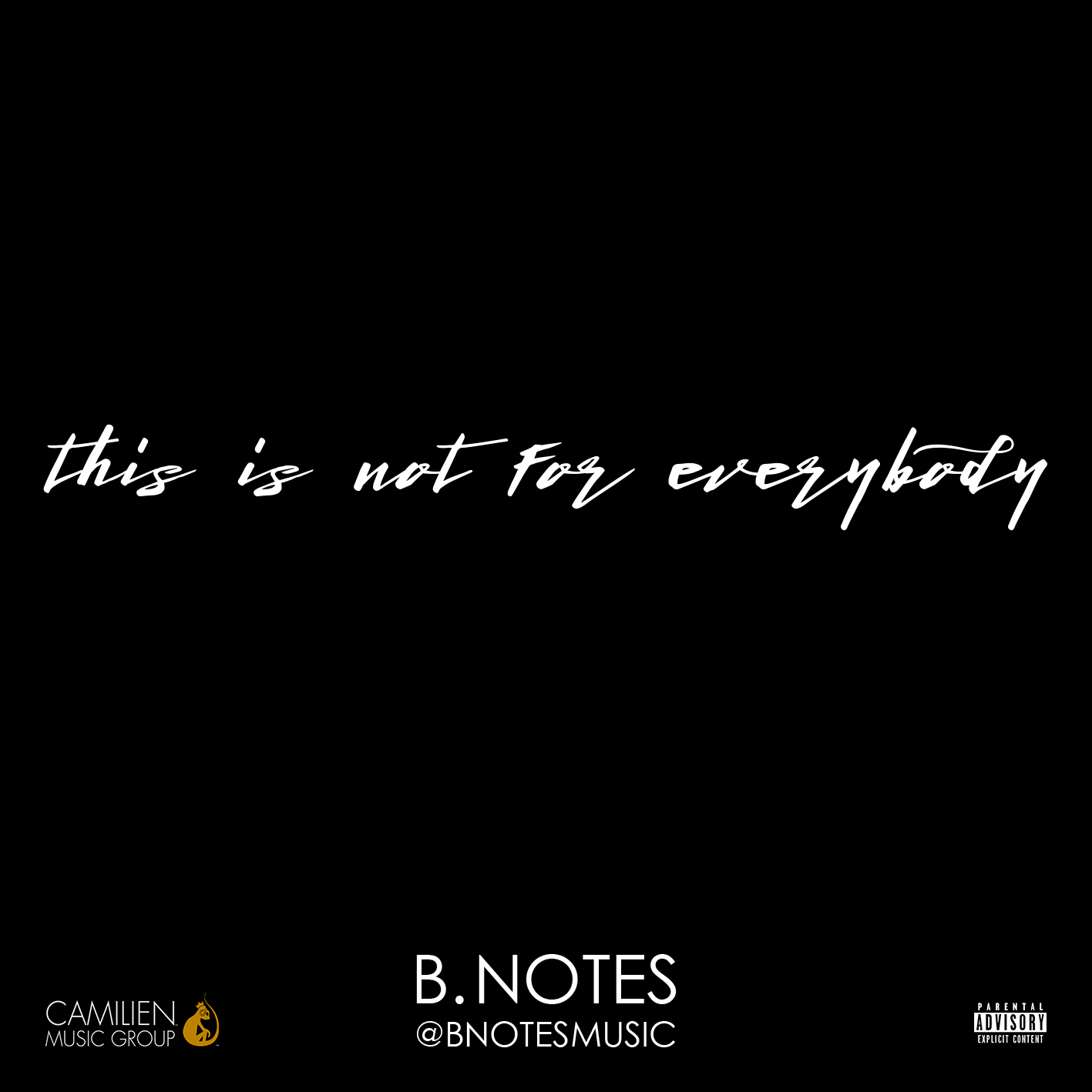 B. Notes – This Is Not For Everybody