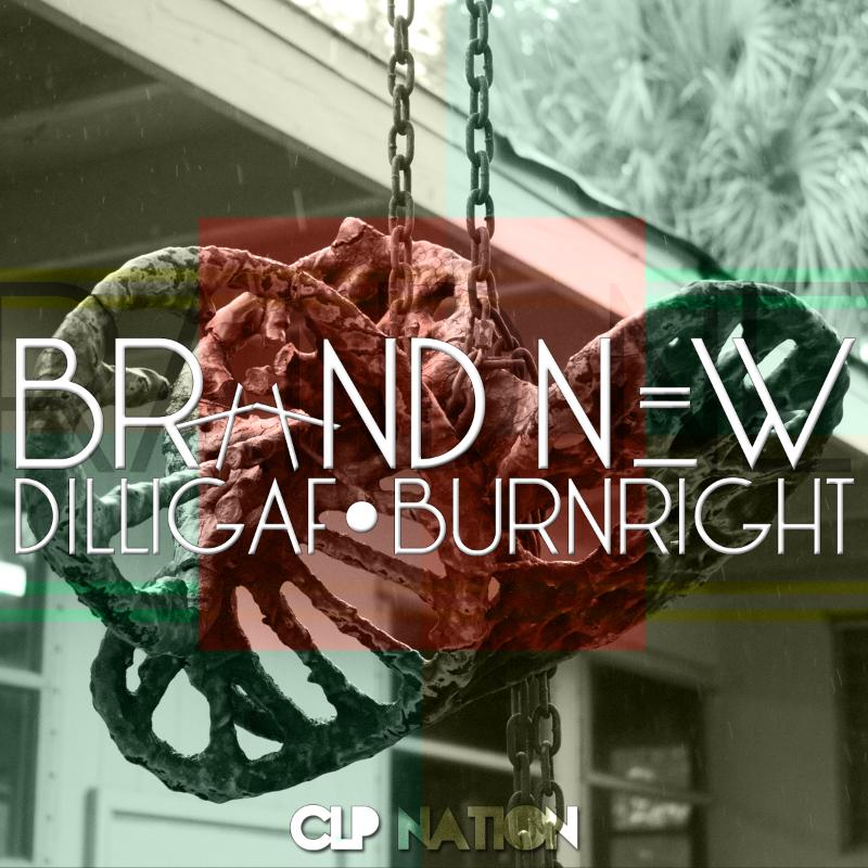 Brand_new_dilligaf627b7b