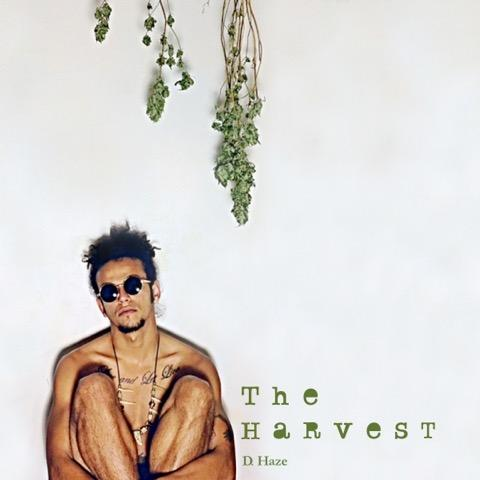 D Haze – The Harvest