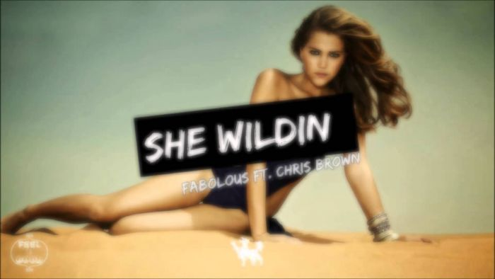 Fabolous Feat. Chris Brown – She Wildin