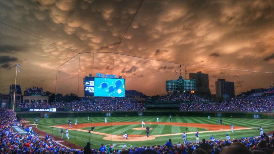 Cubs Fans – Let's Go Let's Do It