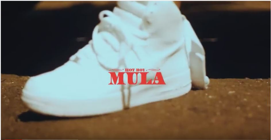 New Video: Hotboy Mula – Pain |