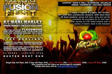 Fusion_Festival_2018_back_8_5x11_1