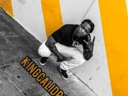 KingCaliDro