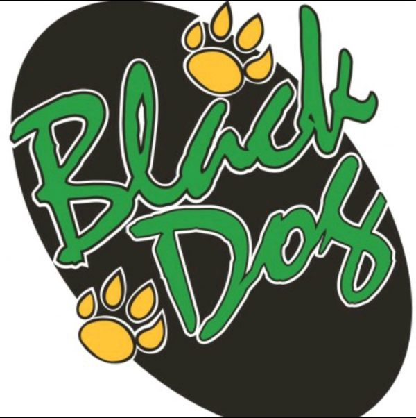 Black Dog Venture Partners Reenters the Music Business